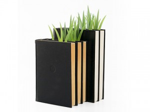 bookmark-300x225